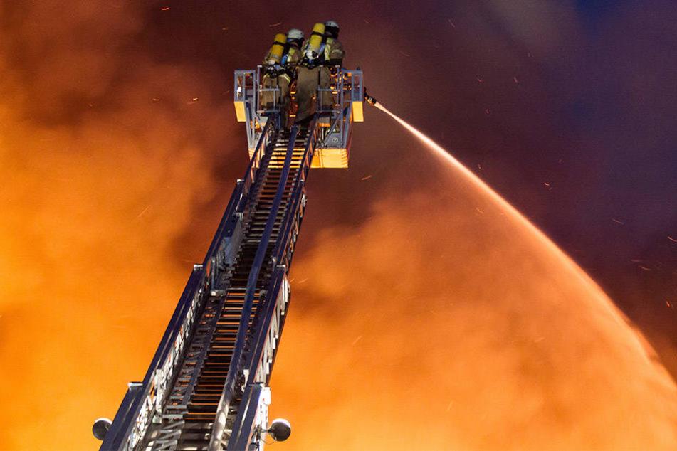 Scheune und Ställe brannten auf dem Gehört in Höxter ab. (Symbolbild)