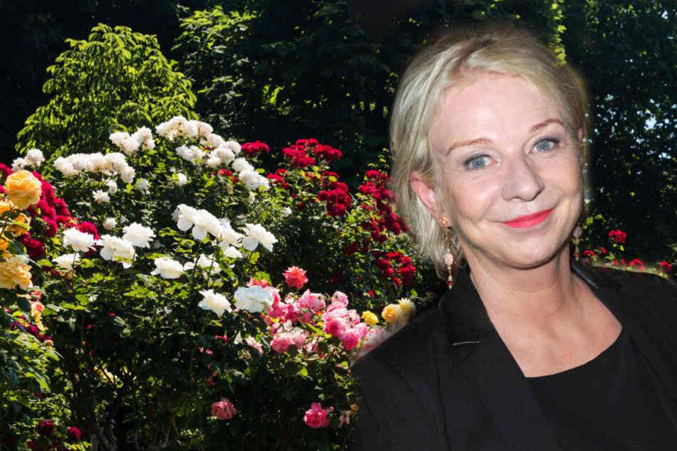 Rita Falk (54) arbeitet am liebsten im Garten.