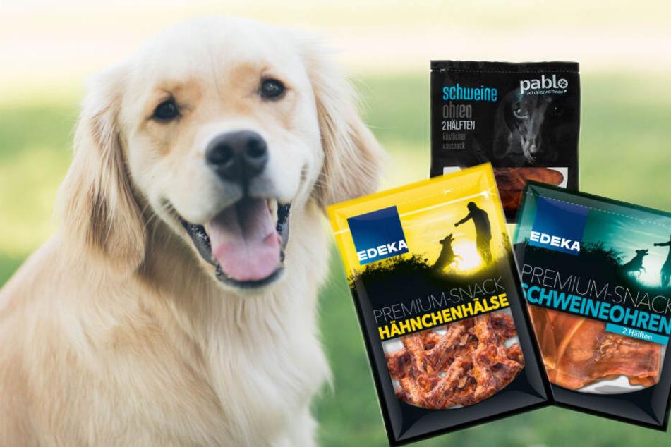 Salmonellengefahr! Edeka ruft Hundefutter zurück