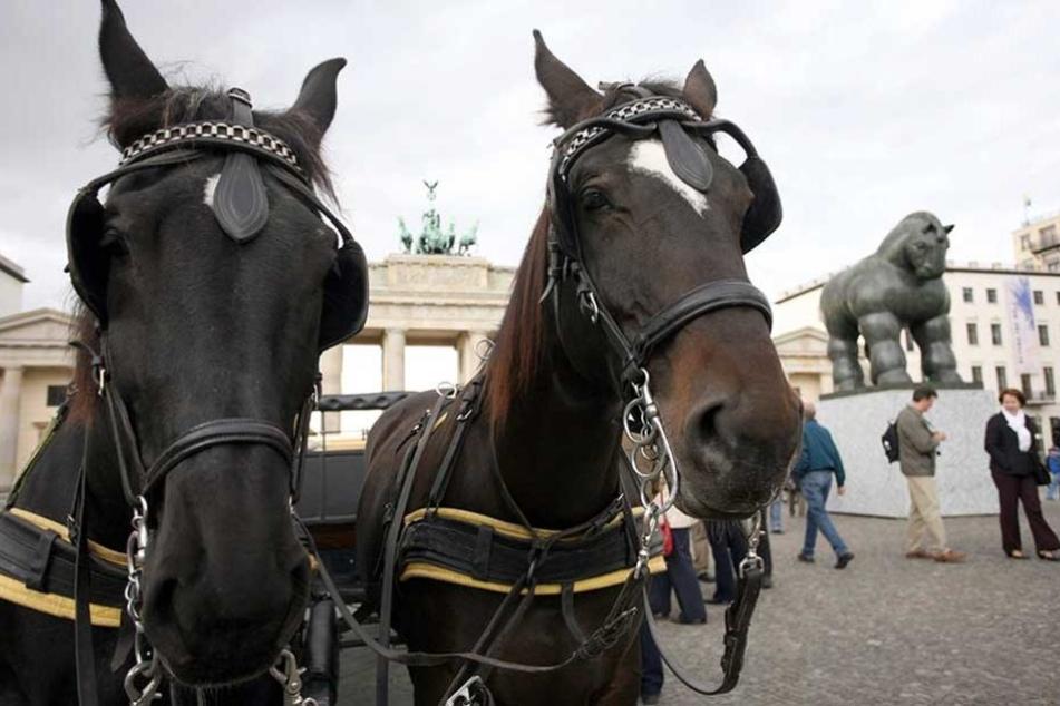 Könnte schon bald der Vergangenheit angehören: eine Pferdekutsche vor dem Brandenburger Tor.
