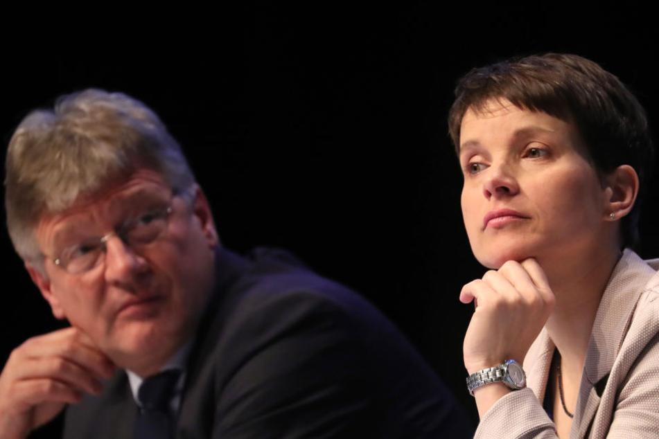 Frauke Petry (42), AfD-Bundesvorsitzende, und Jörg Meuthen (56), AfD-Bundesvorsitzender und Fraktionsvorsitzender der AfD im Landtag von Baden-Württemberg.