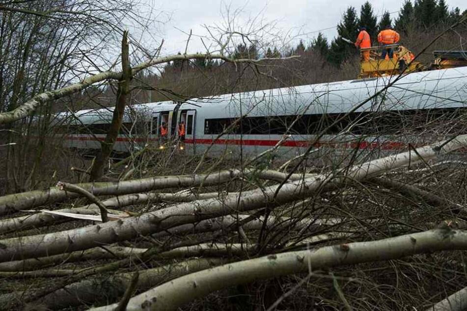 Bäume und Äste liegen bei Lamspringe (Niedersachsen) auf der ICE-Trasse zwischen Hannover  und Göttingen und blockieren einen Zug.