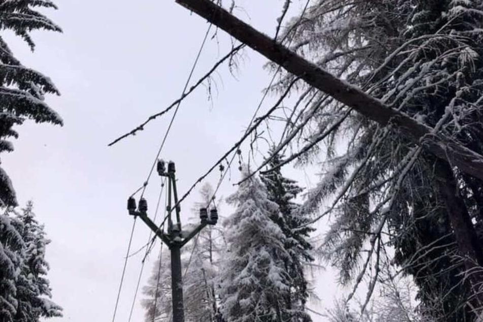 """""""Sabine"""" in Tschechien: 100.000 Haushalte ohne Strom"""