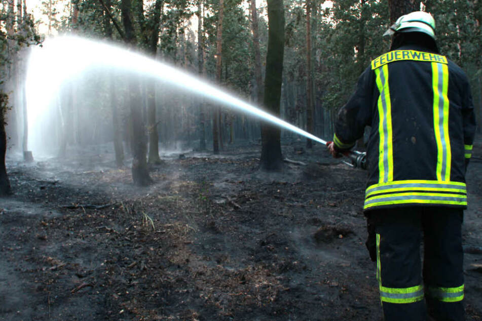 Ein Feuerwehrmann löscht einen Brand in einem Waldstück. (Symbolbild)