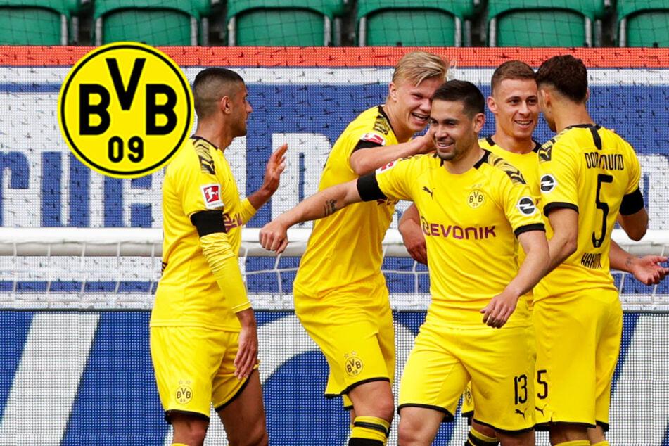 BVB ganz routiniert! Dortmund holt dank Guerreiro und Hakimi Dreier in Wolfsburg