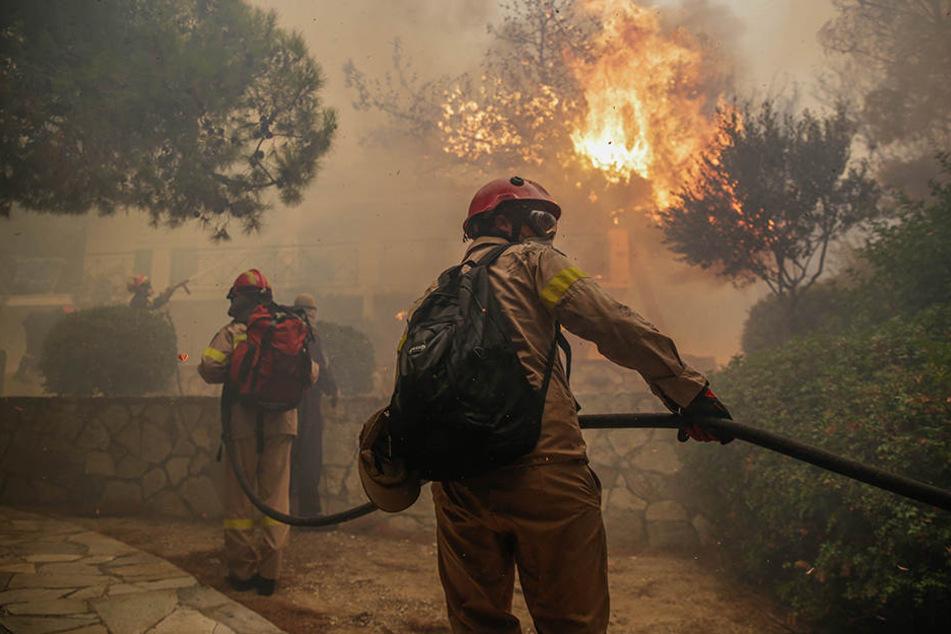 Starker Wind fachte die Flammen an. Dutzende Häuser brannten aus.