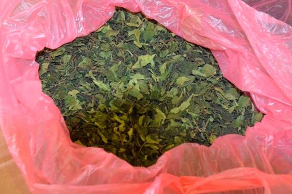 Eng gepresst wird die Kau-Droge in Plastik gehüllt, aus Ostafrika versendet.