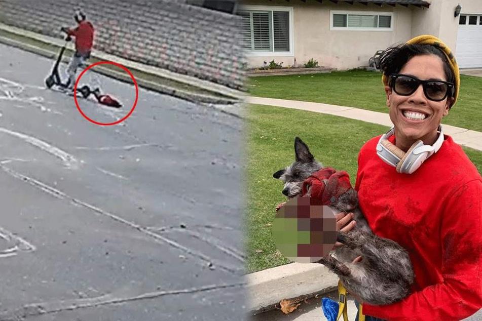 Pfoten bluteten stark: Frau zieht Hund an Scooter hinterher und lacht, als sie gestellt wird
