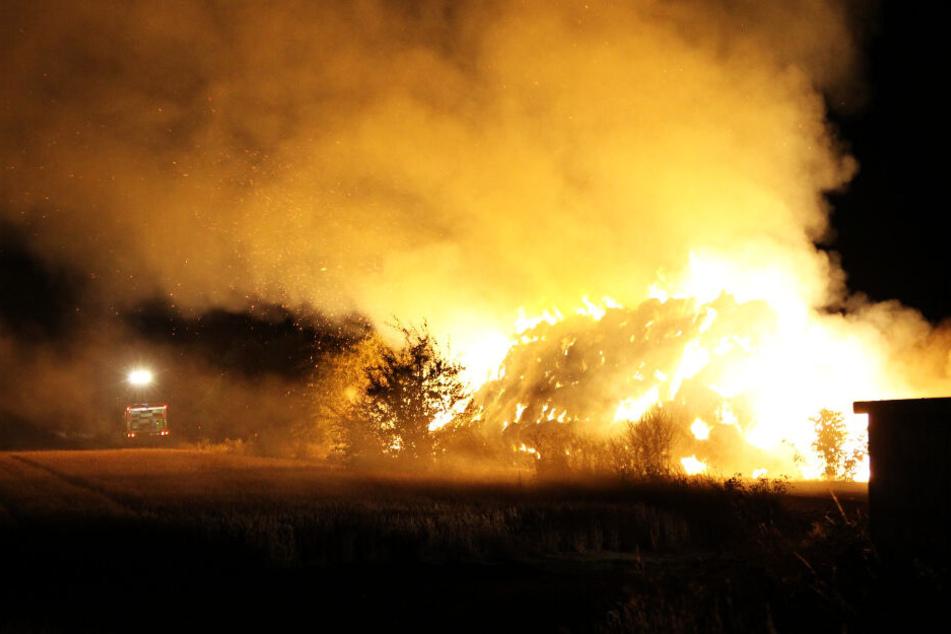 Feuerwehr kämpft gegen meterhohes Flammenmeer in Leipzig