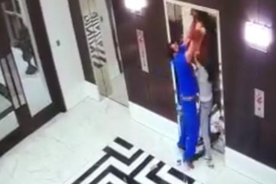 Todeskampf: Hund von Fahrstuhl an Leine hochgezogen