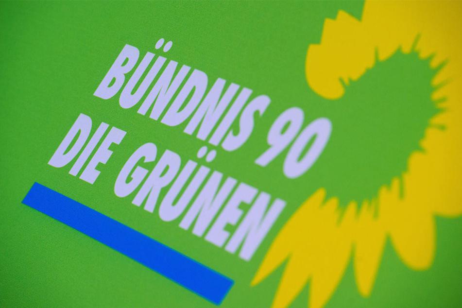 Das Bündnis 90 die Grünen setzen sich für die Umwelt ein.