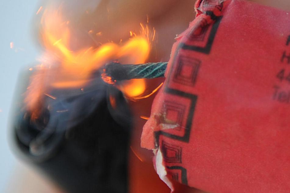 Ein Böller explodierte im Hintern des Hundes Kiro. (Symbolbild)