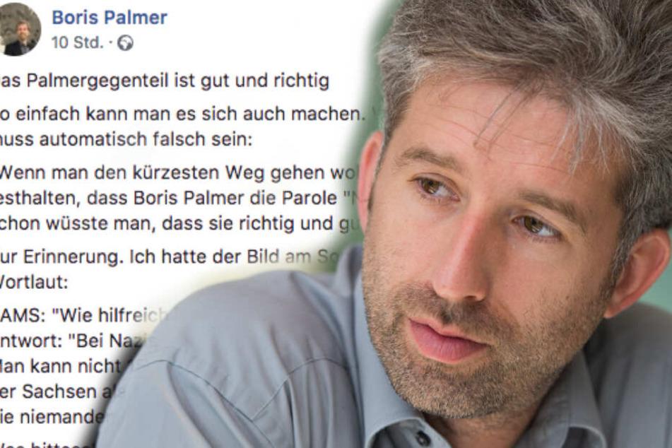 """""""Nazis raus"""": Darum ätzt eine Spiegel-Kolumnistin nun gegen Boris Palmer"""