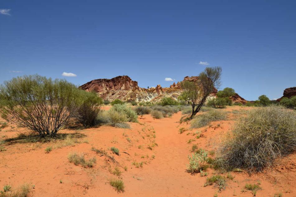 Im australischen Outback kann es tagsüber bis zu 40 Grad heiß werden!