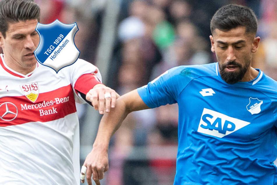 """Hertha mit """"Arroganz"""" dominieren: Ist für die TSG noch die Königsklasse drin?"""