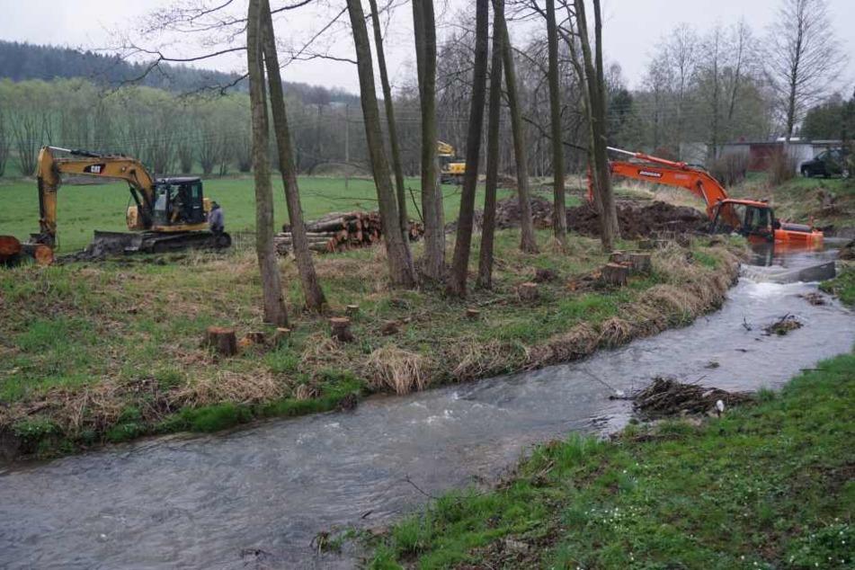 In Weigsdorf-Köblitz rutschte ein Bagger während Bauarbeiten in das Cunewalder Wasser.