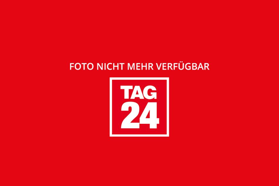 Stanislaw Tillich (r., 57, CDU) und OB Dirk Hilbert (l., 44, FDP) testen die eigens für den 3. Oktober beklebte Straßenbahn. Im Hintergrund: Chef der Verkehrsbetriebe, Lars Seiffert (46).
