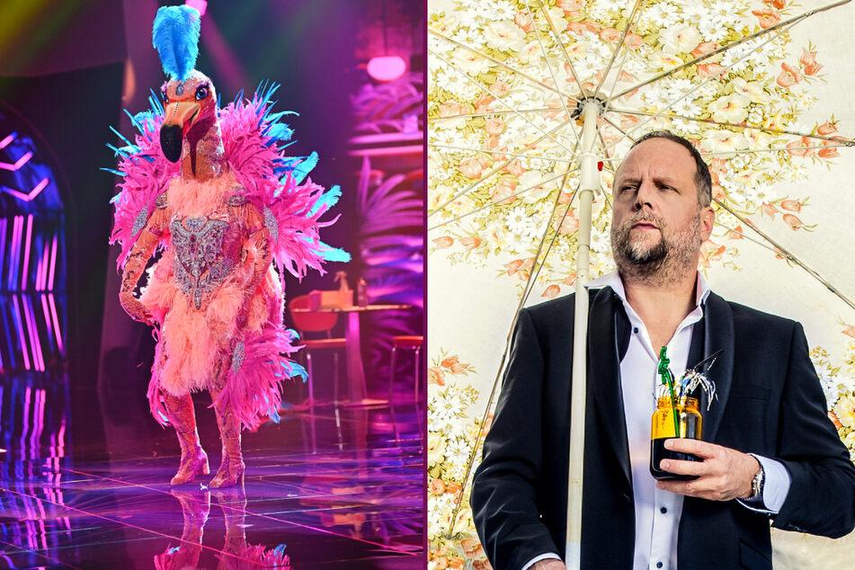 """Verwirrung bei """"The Masked Singer"""": Ist der Flamingo männlich oder weiblich?"""