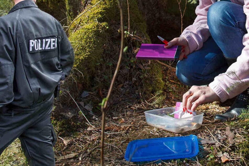 Das vermeintliche Drogenversteck entpuppte sich als Geocaching-Behältnis. (Bildmontage)
