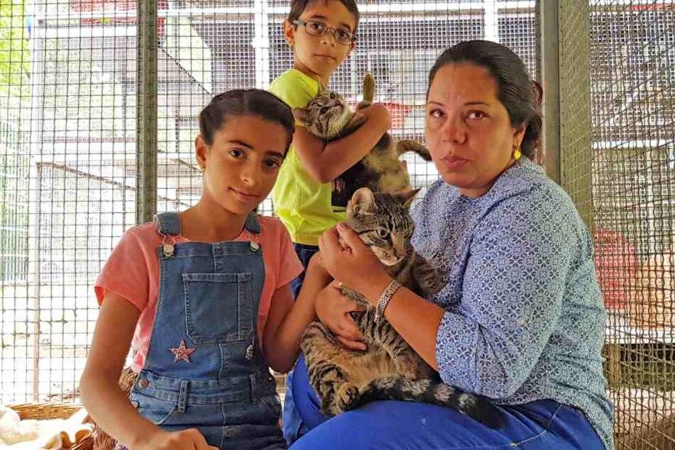 Die Flüchtlingsfamilie Alogaili muss ins Tierheim gehen, um ihre Lieblinge zu besuchen. Bürokratische Dickschädel haben ihren Willen durchgesetzt.