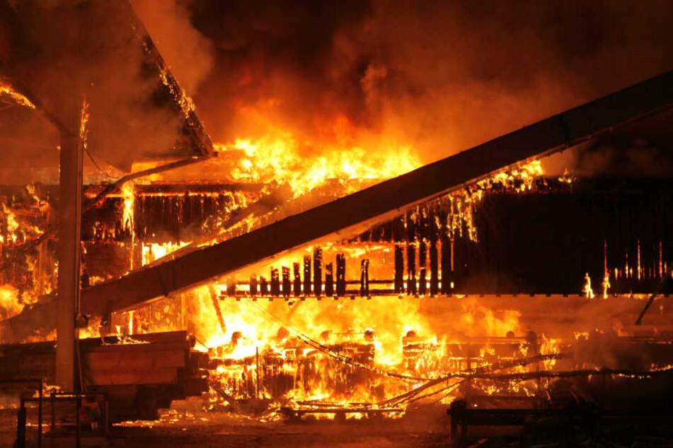 Das komplette Sägewerk ist in Flammen gehüllt.