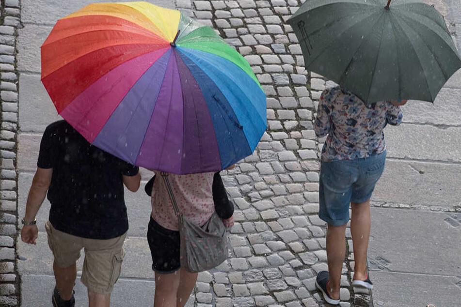 Im Laufe der Woche werden Niederschläge erwartet. Vereinzelte Regenschauer ändern allerdings kaum etwas an den Wasserständen in Dresdens Fließgewässern.
