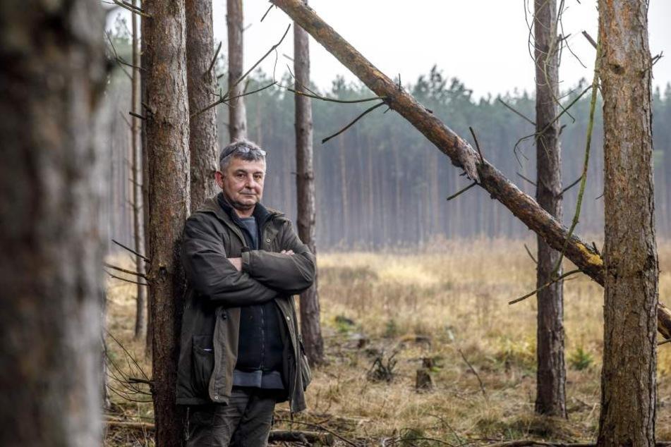 Peter Graf (53) ist sauer: In seinem Wald sterben die Bäume ab.