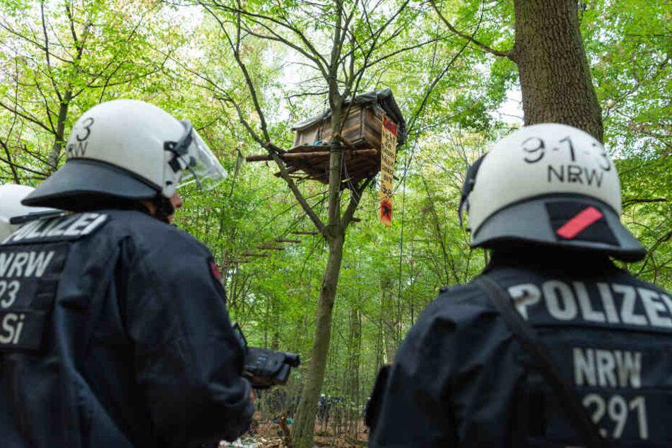 Im Herbst 2018 zerstörte die Polizei bei der Räumung des Hambacher Forsts 86 Baumhütten (Archivbild).