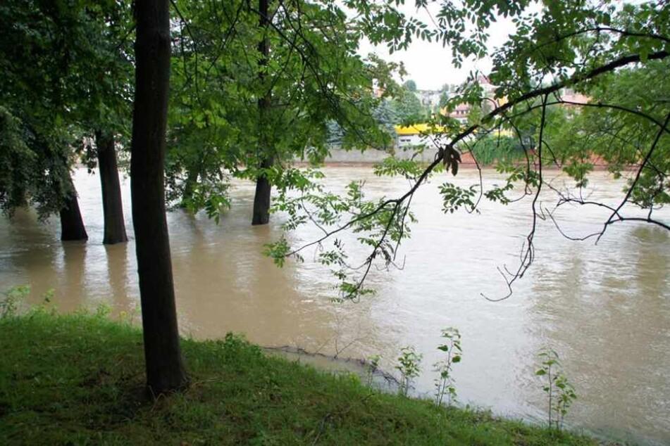 Starke Regenfälle ließen die Gewässer im Landkreis Görlitz am Wochenende stark ansteigen.
