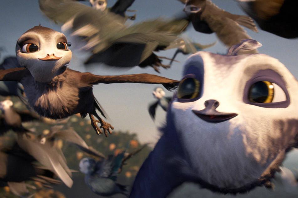 """Oh je: Warum der deutsche Animationsfilm """"Manou, flieg' flink!"""" so schlecht ist!"""