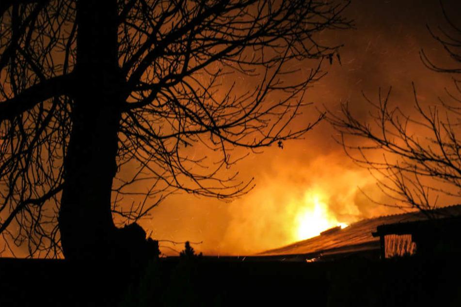 Die Flammen schlugen schon aus dem Dach des Schuppens.