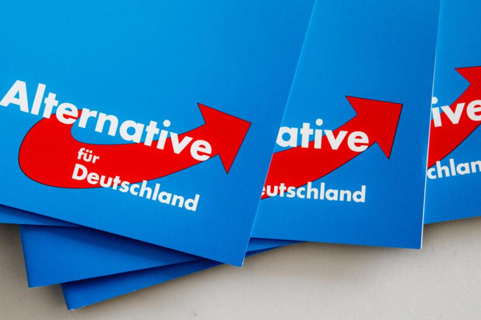 Das Logo der Alternative für Deutschland (AfD) ist auf dem Landesparteitag auf einer Parteibroschüre zu sehen.