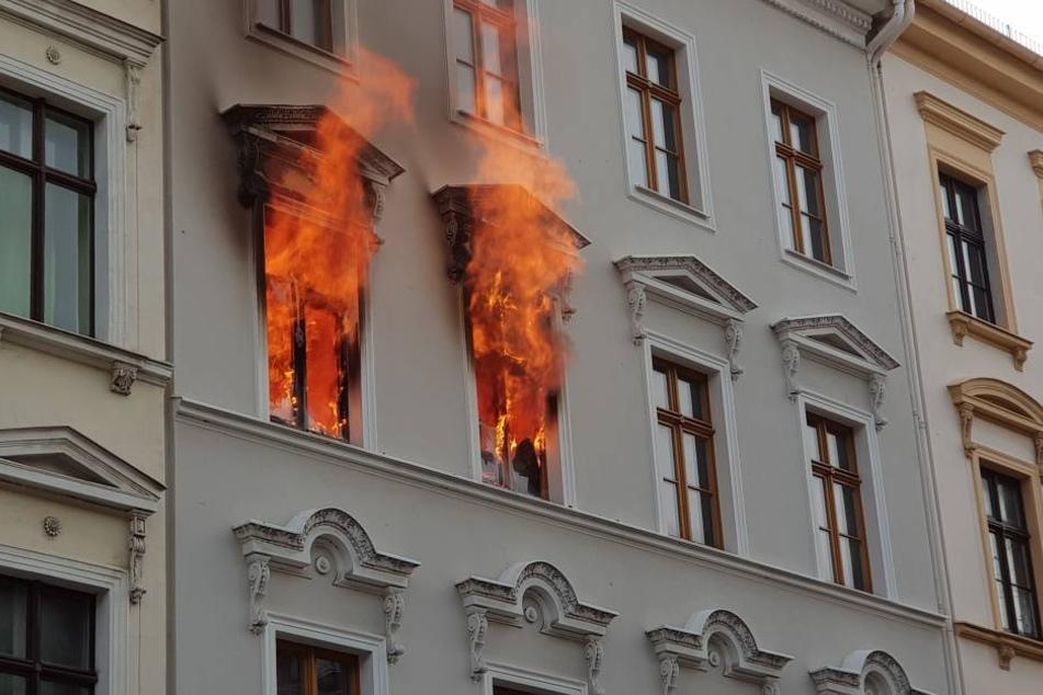Eine Frau und vier Kinder mussten aus der Wohnung gerettet werden.