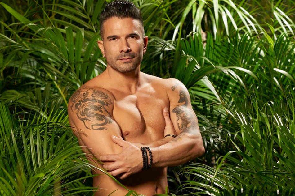 Marc Terenzi ist der amtierende Dschungelkönig. Für den 38-Jährigen und seine Anja (29) könnten schon bald die Hochzeitsglocken läuten.