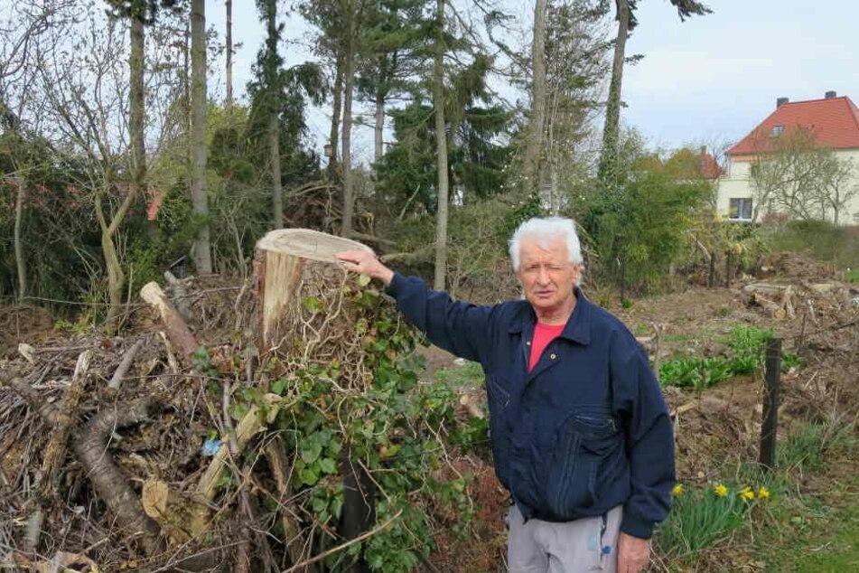 Im Mai jagte ihn die Kirche nach über 50 Jahren von seinem Grundstück. Jetzt ist von Christian Teichmanns einzigartiger Baum- und Pflanzenweelt kaum noch etwas übrig.