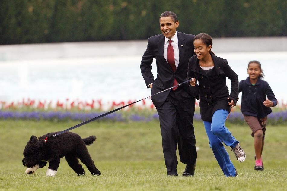 2009: Malia Obama läuft mit dem Portugiesischen Wasserhund Bo, gefolgt von damaliger US-Präsident Barack Obama und Sasha Obama, auf dem South Lawn des Weißen Hauses.