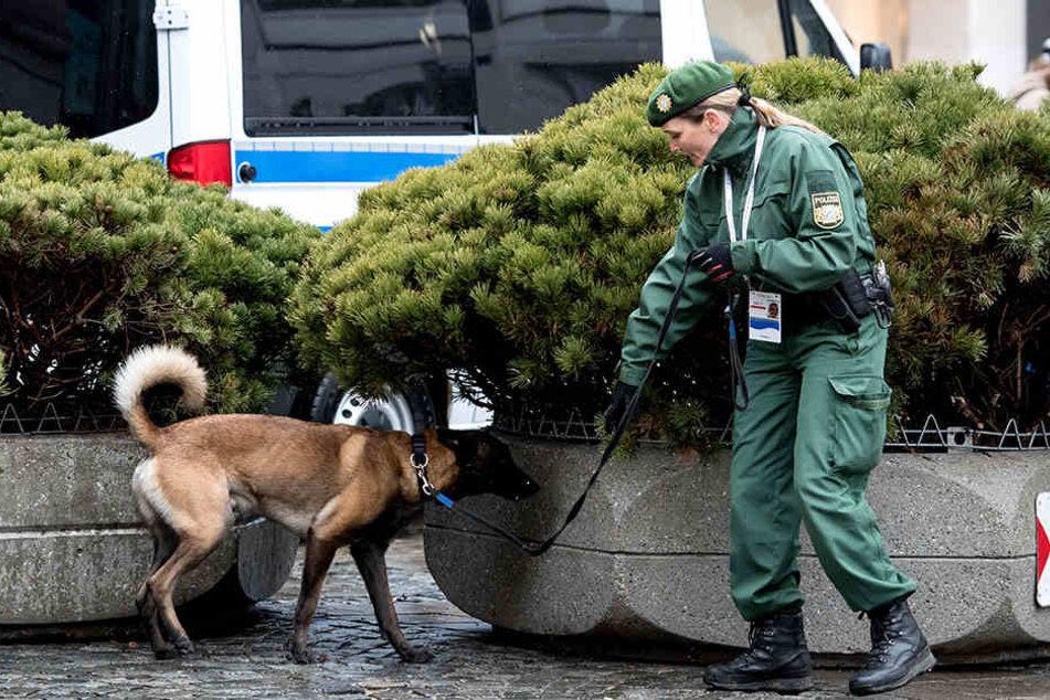 """Eigentlich klappt immer alles rund: Eine Polizistin untersucht in München mit einem Hund das Gelände vor dem Hotel """"Bayerischen Hof"""" vor der Münchner Sicherheitskonferenz 2017."""