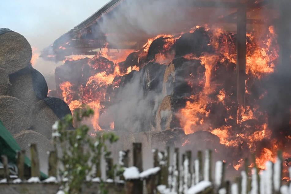2000 Stroh- und Heuballen in Flammen! Erst fünf Tage später konnte das Feuer gelöscht werden