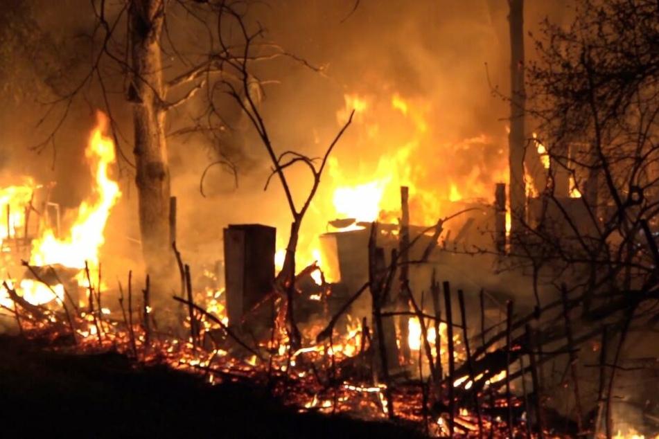 Garten brennt lichterloh: Zahlreiche Tiere in Gefahr!