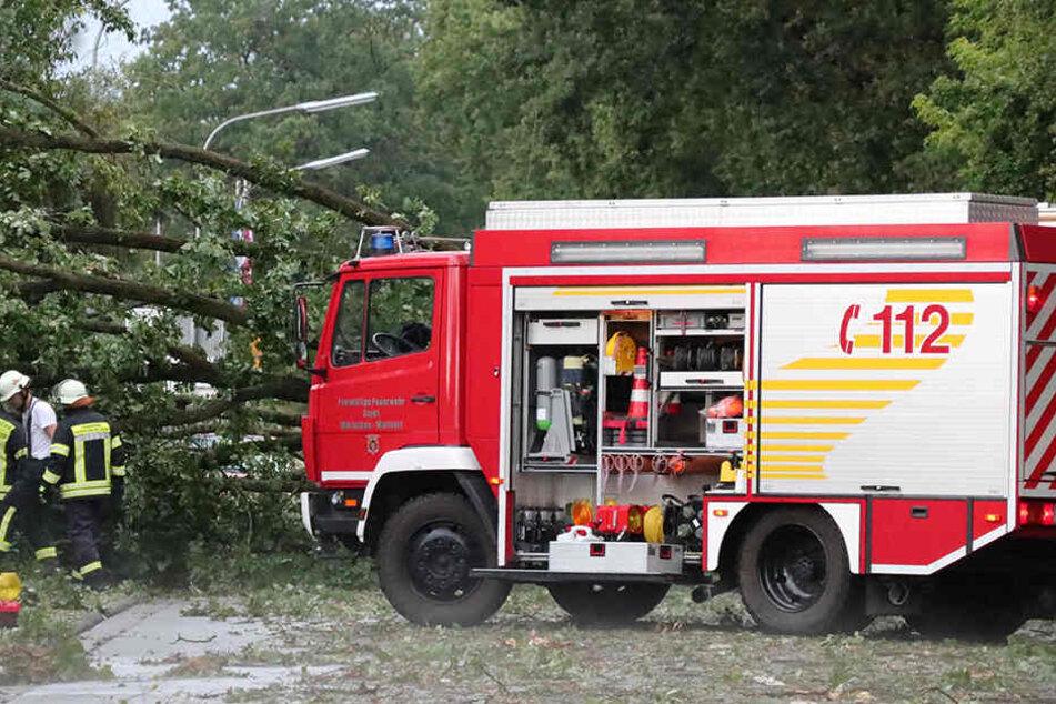 Im Rhein-Main Gebiet gingen am Sonntag heftige Niederschläge nieder. Ein Baumstürzte bei Mörfelden auf die Straße und blockierte die Fahrbahn.
