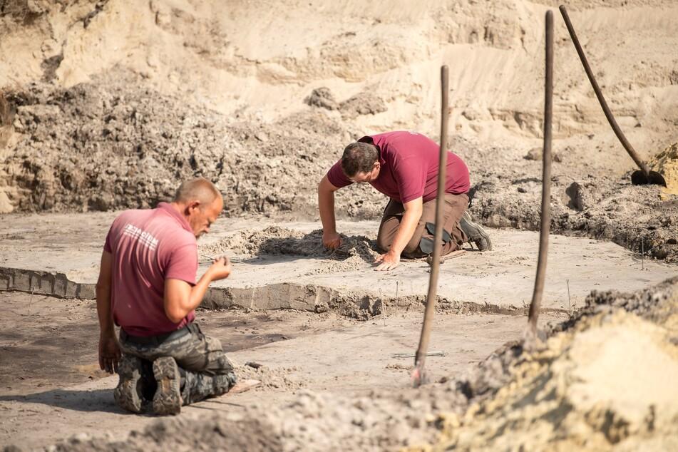 """""""Extrem wertvoll"""": Diese Baustelle in Bremen begeistert Archäologen"""