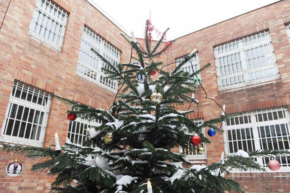 in Weihnachtsbaum steht in einem Innenhof der Jugendstrafanstalt in Berlin.