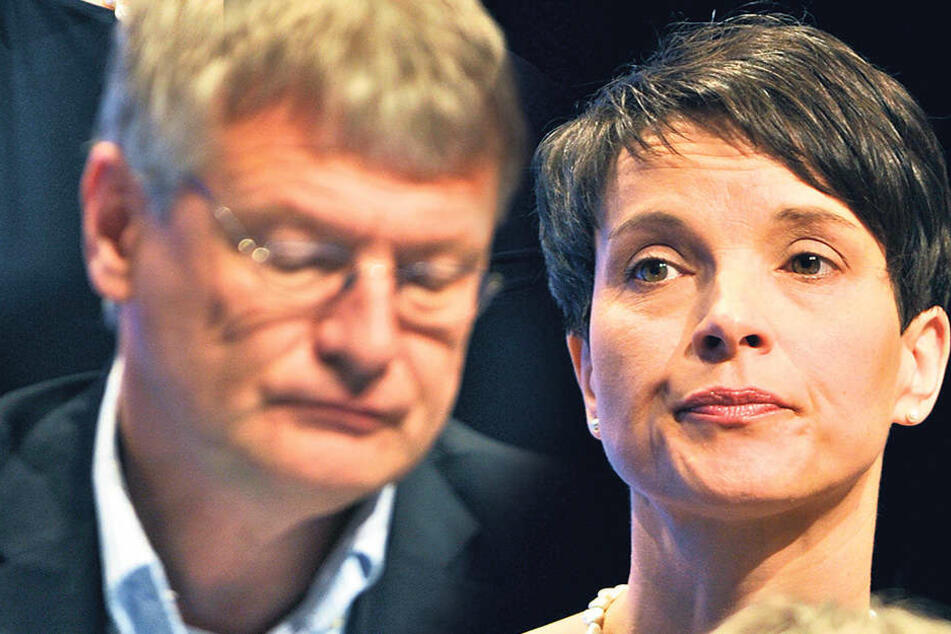 Höhenflug vorerst gestoppt: Die Umfragen machen die AfD-Chefs Frauke Petry (41) und Jörg  Meuthen (55) nicht gerade glücklich.
