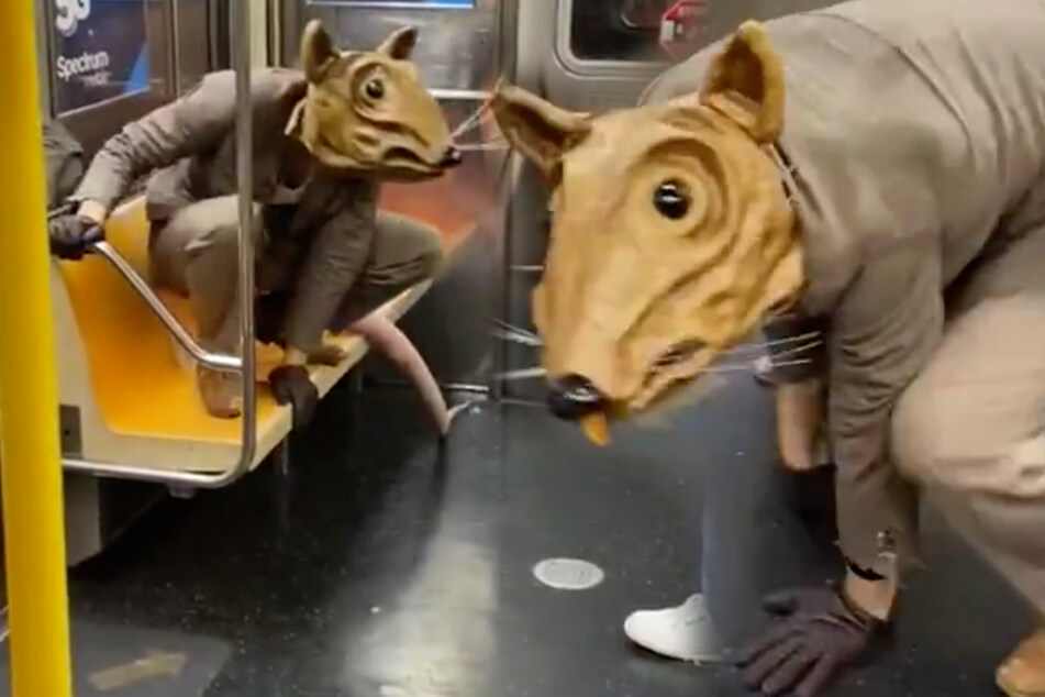 Only in New York: giant subway rat leaves commuters unimpressed