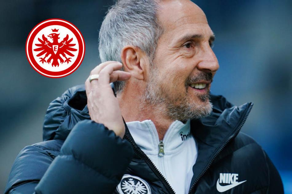 Disziplin und Herzblut: So will Eintracht-Coach Hütter Leipzigs Bullen zähmen
