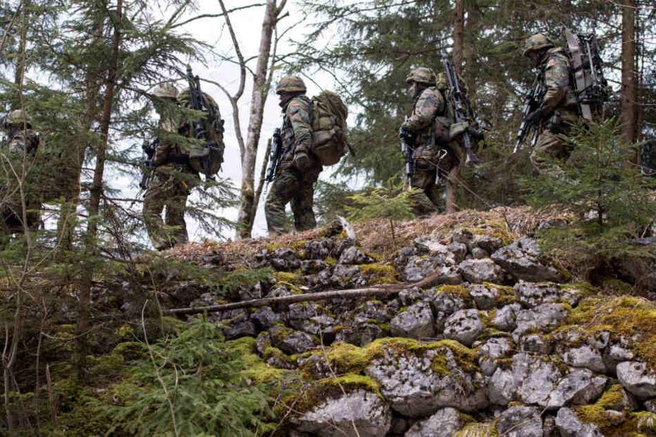 Die Gebirgsjäger werden ihre Einsatzbereitschaft demonstrieren. (Symbolbild)