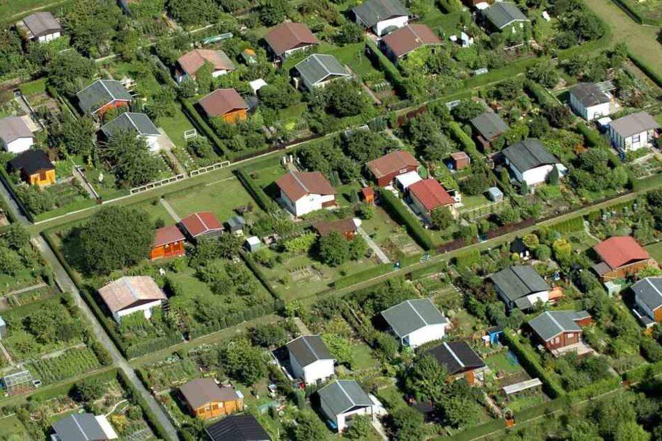 Auch Kleingärten können zum Nachlass gehören, der mangels Erben an den  Freistaat geht. Oft ist der Nachlass überschuldet.