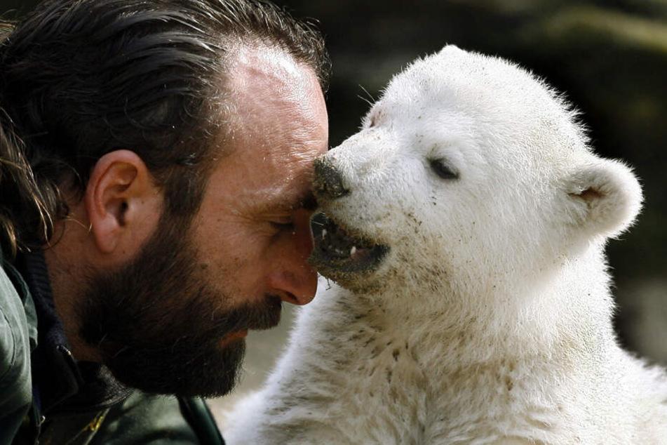 Knut und sein Pfleger - ein Herz und eine Tatze.