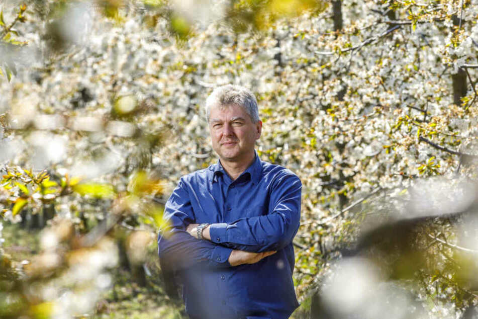 Udo Jentzsch ist Geschäftsführer des Landesverbandes Sächsisches Obst