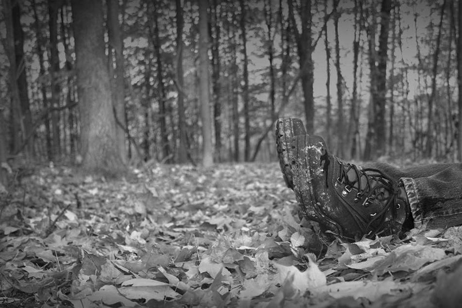 In einem Waldstück nahe ihres Heimatdorfes wurde die Leiche von Angelina Litvinenko gefunden. (Symbolbild)
